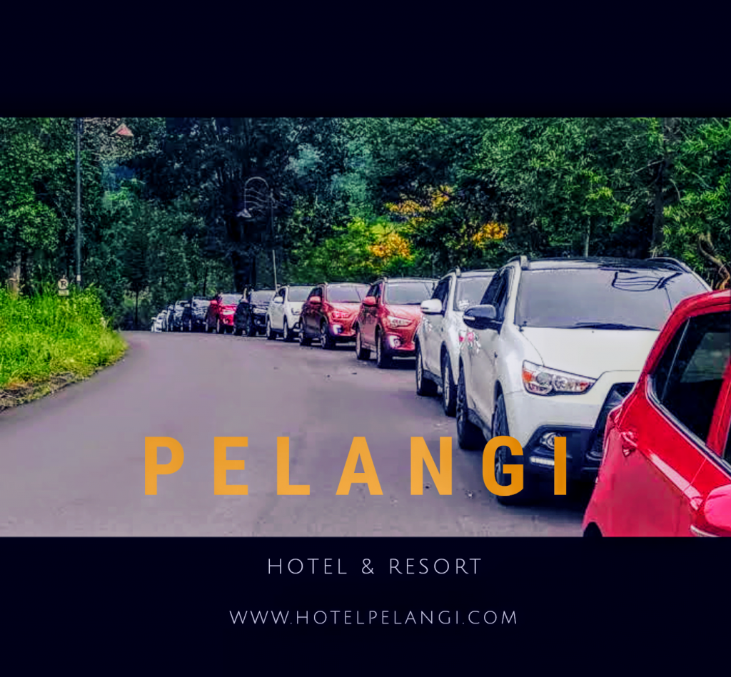 hotel resort sentul murah gathering meeting retreat wedding outdoor,sentul