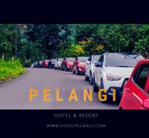 hotel resort sentul murah gathering meeting retreat wedding outdoor,sentul